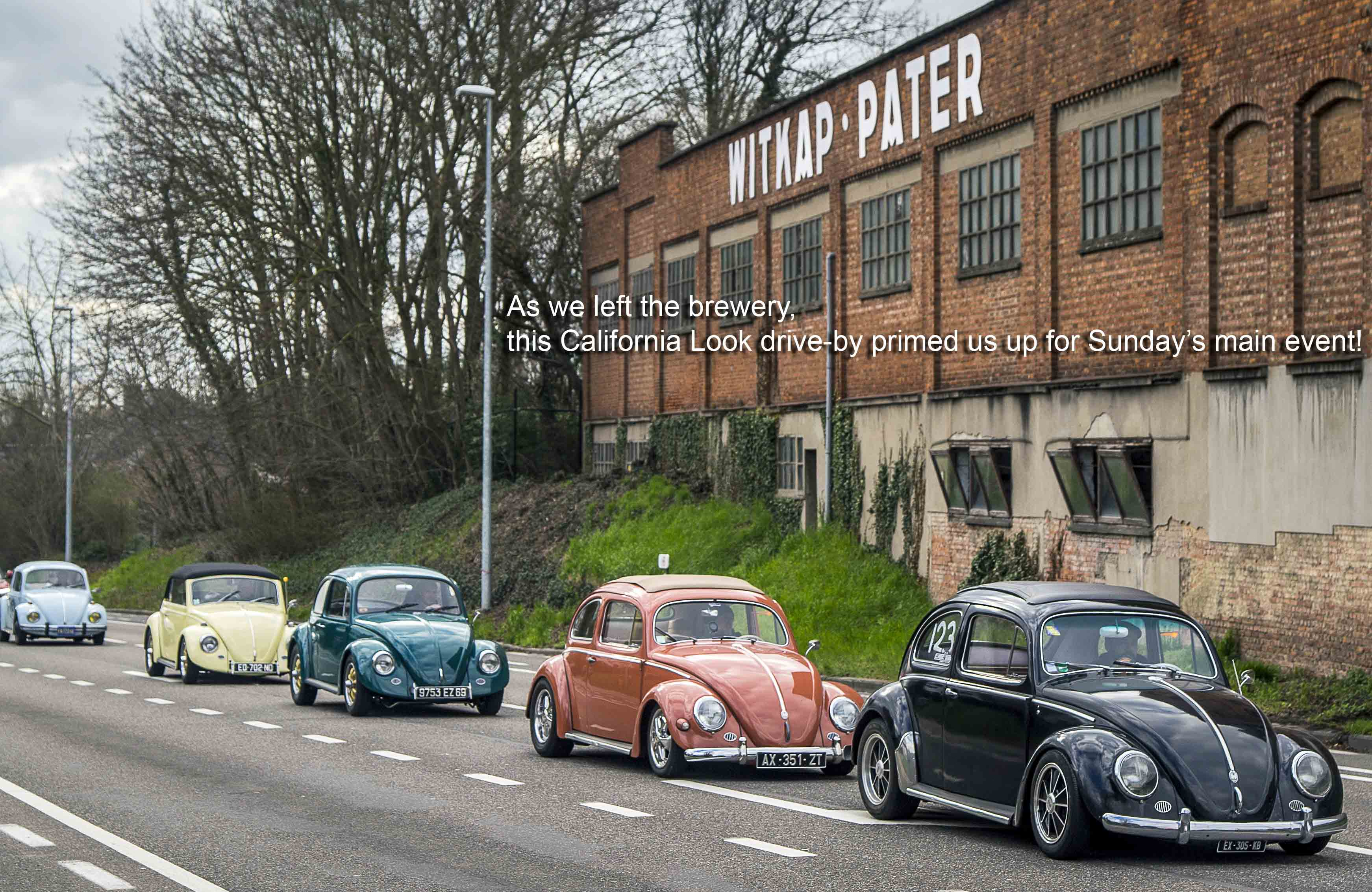 VW Beetles driving from the brewery in Belgium