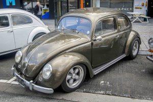 Oval Window beetle at Ninove 2019