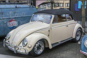 Oval Window Cabriolet Beetle at Ninove 2019